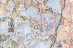 Wall of the old plaster and paint as a background. Stock Photography