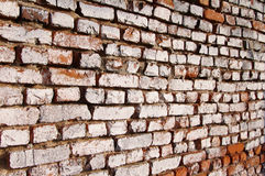 Wall from an old red brick. Royalty Free Stock Images