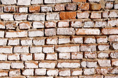 Wall from an old red brick. Stock Images