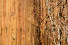 The wall of an old wooden house made of thin vertical slats. Weathered and aged boards. Royalty Free Stock Images