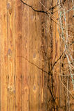 The wall of an old wooden house made of thin vertical slats. Weathered and aged boards. Royalty Free Stock Photography