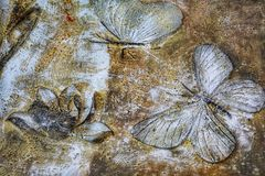 Wall painting. S of butterflies and lotus flowers royalty free stock photography