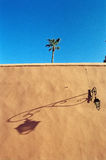 Wall palm shadow. Late afternoon, Marrrakech Medina, Maroc, Africa Stock Photography
