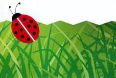 Wall paper. Childrens room wall paper with ladybird and grass Royalty Free Stock Images