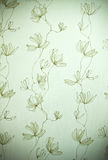 Wall paper design Royalty Free Stock Photography