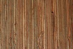 Wall-paper natural de uma grama Foto de Stock