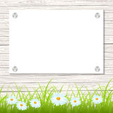 Wall with a piece of paper. And green grass. Vector illustration Royalty Free Stock Photo