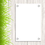 Wall with a piece of paper. And green grass. Vector illustration Stock Photos