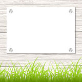 Wall with a piece of paper. And green grass. Vector illustration Royalty Free Stock Photography