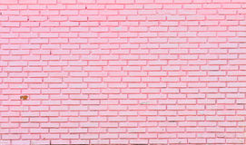 Wall of pink bricks Stock Images