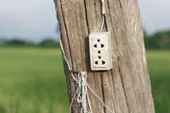 Wall plug on wooden pole Stock Photography