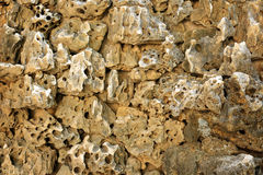 Wall porous rock Royalty Free Stock Image