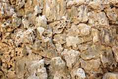 Wall porous rock Stock Photography