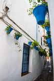 Wall pots in Cordoba Royalty Free Stock Image