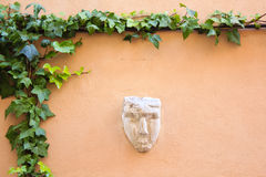 Wall in Provence. Pink wall with stucco mask and creeping plant in Cassis, France Stock Image