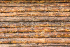 Wall of raw logs Royalty Free Stock Photography