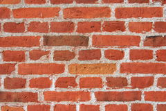 Wall of red bricks Stock Image