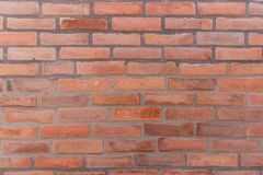 Wall of red old brick. Detailed texture Stock Images