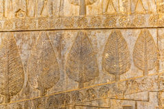 Wall relief in Persepolis Royalty Free Stock Photography