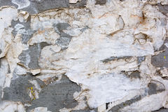 Wall with remains of paper posters royalty free stock photo