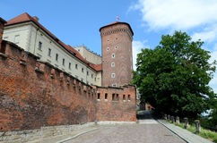 The wall of the royal castle in Krakow Royalty Free Stock Photography