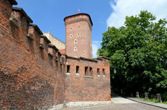 The wall of the royal castle in Krakow Stock Image