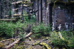Wall ruins Royalty Free Stock Photos