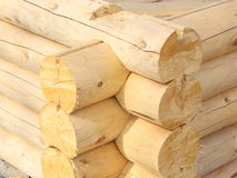 Wall of a rural log house. From the fresh cut logs Royalty Free Stock Image