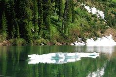 Wall See und Wald Stockbild