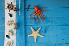 Wall in Sete, Languedoc-Roussillon, south of France. Wall of fishermen`s hut in the Fishermen's district village of Sete called La Pointe Courte stock image