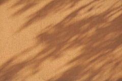 background wall shadow leaves brown orange Royalty Free Stock Photos