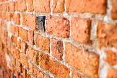 Wall with single black brick Royalty Free Stock Images