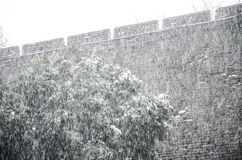 Wall in snowstorm. Ancient city wall of nanjing is  in the snowstorm Royalty Free Stock Photo