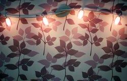 Wall spot lamp Royalty Free Stock Image