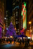 Wall St Tree at Night royalty free stock photo