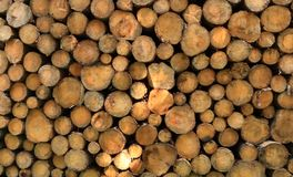 Wall of stacked wood logs as background. A Wall of stacked wood logs as background royalty free stock photos