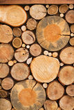 Wall of stacked wood logs as background, texture. Royalty Free Stock Photography