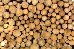 Wall of stacked wood logs as background. A Wall of stacked wood logs as background stock photography