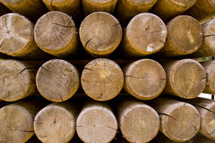 Wall of stacked wood logs showing natural discoloration Stock Photography