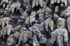 Wall of stalactites Stock Photos