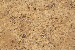 Wall stone grain Stock Images