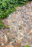 Wall of stone  with ivy corner. Wall of a large yellow crushed stone overgrown with ivy upper left corner Royalty Free Stock Photography