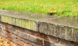 Wall of stone with many autumn leaves Royalty Free Stock Image
