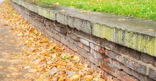 Wall of stone with many autumn leaves Royalty Free Stock Photos
