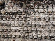 Wall of stone skulls. Detail from a wall at the Templo Mayor, Mexico Royalty Free Stock Photos