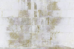 Wall stone spotted Royalty Free Stock Images