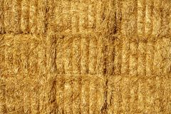 Wall of straw bales close-up Royalty Free Stock Photography