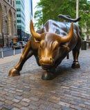 Wall Street Byk obrazy stock