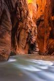 Wall Street przesmyki, Zion park narodowy, Utah fotografia royalty free