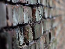 The wall stretches down perspective background. Wall going further perspective background as bricks angle nail look then closer then further Wallpaper substrate Royalty Free Stock Photography